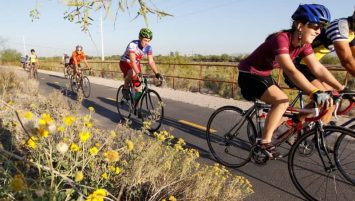 the-loop-bikes-cycling