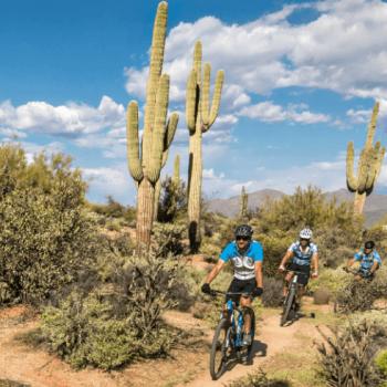 Mountain Bike North Tucson/Oro Valley Sensational Three!