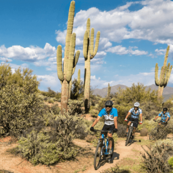 Mountain Bike North Tucson/Oro Valley Sensational Three!